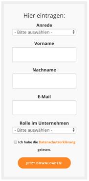 Landing Page: Formular