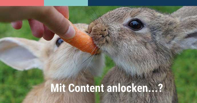 Content Marketing Themen