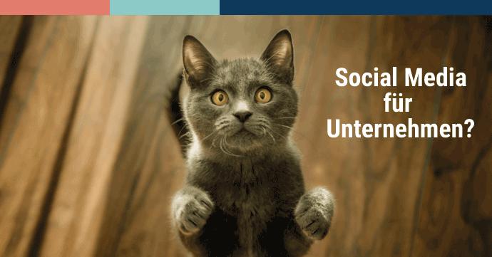 Unternehmen Nutzen Social Media